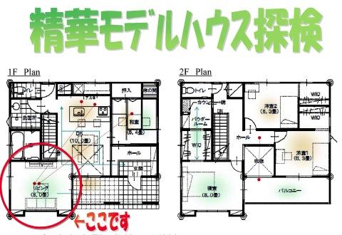 kyotojyouyou130502h
