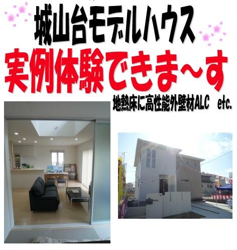kyotojyouyou140403b